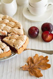 Homemade plum cake Royalty Free Stock Image