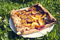 Homemade plum cake Royalty Free Stock Image