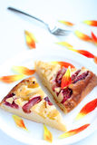 Homemade plum cake on a white plate. Homemade pie on white plate, natural light Stock Photography