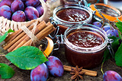 Homemade plum jam. With freshly picked plums on wooden table Stock Image