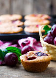 Homemade plum muffins Royalty Free Stock Photos