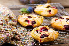 Homemade plum pastry Royalty Free Stock Photography