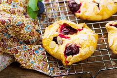 Homemade plum pastry Stock Photos