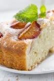 Homemade plum pie Royalty Free Stock Photo