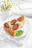 Homemade plum pie Royalty Free Stock Image