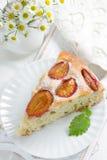 Homemade plum pie Stock Photo