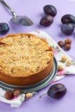 Homemade plum pie Stock Image