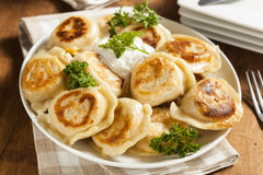 Homemade Polish Pierogis with Sour Cream Stock Photos