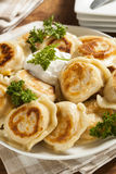 Homemade Polish Pierogis with Sour Cream Stock Photography