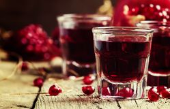 Homemade pomegranate liqueur, still life in rustic style, vintag royalty free stock photos