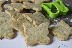 Homemade poppy cookies. Homemade cookies, poppy cookies in the shape of butterflies, butterfly cookies, poppy seeds cookies on scattered poppy grains with green stock image