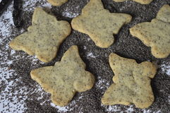 Homemade poppy cookies Stock Images