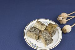 Homemade poppy seed cake on a table Royalty Free Stock Photos