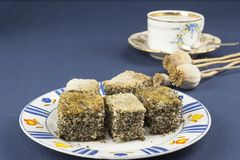 Homemade poppy seed cake on a table Royalty Free Stock Photo