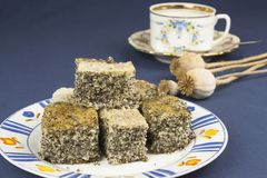 Homemade poppy seed cake on a table Royalty Free Stock Image