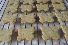 Homemade poppy seeds cookies. Homemade cookies, poppy cookies in the shape of butterflies, butterfly cookies, poppy seeds cookies royalty free stock photo