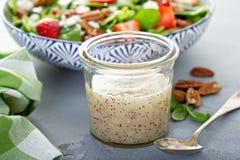Free Homemade Poppyseed Salad Dressing Stock Images - 141662644