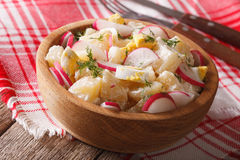 Homemade potato salad with radish and eggs in a bowl. horizontal Stock Images