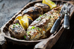 Homemade potatoes and trout fish with herbs and butter Royalty Free Stock Images