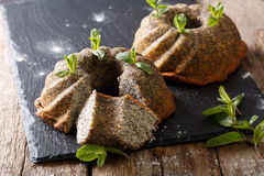 Homemade pound of poppy cakes with mint closeup. horizontal Stock Images
