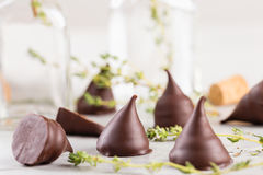 Homemade praline chocolate candies Royalty Free Stock Photo