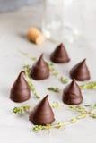 Homemade praline chocolate candies Stock Images