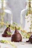 Homemade praline chocolate candies Stock Photo