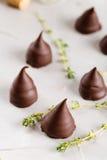 Homemade praline chocolate candies Royalty Free Stock Image