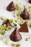 Homemade praline chocolate candies Royalty Free Stock Images