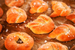 Homemade pretzels Royalty Free Stock Photography