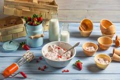 Homemade production line of strawberry ice cream Stock Photo