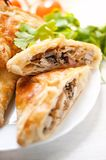 Homemade puff pastry with chicken and mushroom Stock Photography