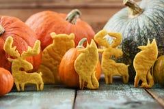 Homemade pumpkin animal shaped cookies - moose, bear and fox - s Royalty Free Stock Photos