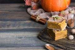 Homemade pumpkin bars with sugar-cinnamon crust. For the holiday and for every day royalty free stock photos