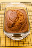 Homemade Pumpkin Bread on a Cooling Rack. Loaf of homemade pumpkin bread that is hot out of the oven and freshly baked. This sweet brown bread is in a Stock Photos
