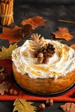 Homemade Pumpkin Cheesecake with Marshmallow Meringue Topping decorated with pinecones and autumn leaves over dark background. Aut stock photo