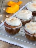 Homemade pumpkin cupcakes Stock Photos