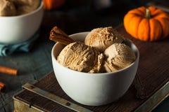 Homemade Pumpkin Pie Ice Cream Stock Photo