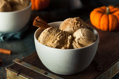 Homemade Pumpkin Pie Ice Cream Stock Image