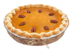 Homemade pumpkin pie isolated on white Stock Photography