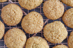 Homemade Pumpkin Spice Cookies Stock Image