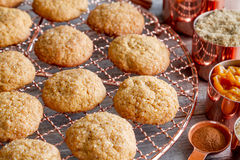 Homemade Pumpkin Spice Cookies Royalty Free Stock Images