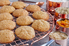 Homemade Pumpkin Spice Cookies Royalty Free Stock Photography