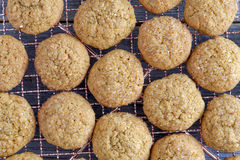 Homemade Pumpkin Spice Cookies Stock Photography