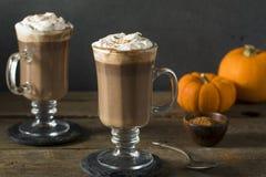 Homemade Pumpkin Spice Hot Chocolate Royalty Free Stock Image