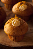 Homemade Pumpkin Spice Muffins Royalty Free Stock Photography