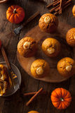 Homemade Pumpkin Spice Muffins Royalty Free Stock Photos