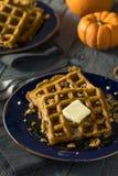 Homemade Pumpkin Spice Waffles Royalty Free Stock Photo
