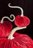 Homemade pumpkins for Halloween. Decoration Royalty Free Stock Image