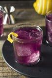 Homemade Purple Haze Cocktail Royalty Free Stock Photos